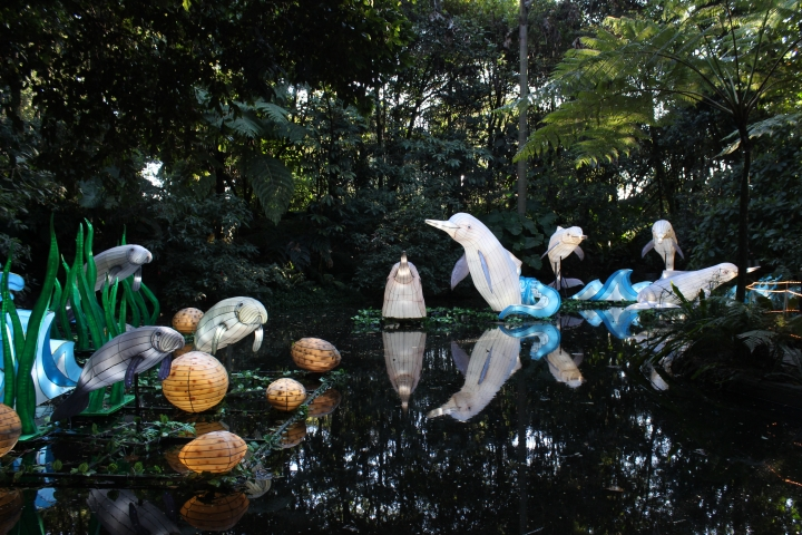 Festival Brilla Colombia 2019: Gigantes de luz