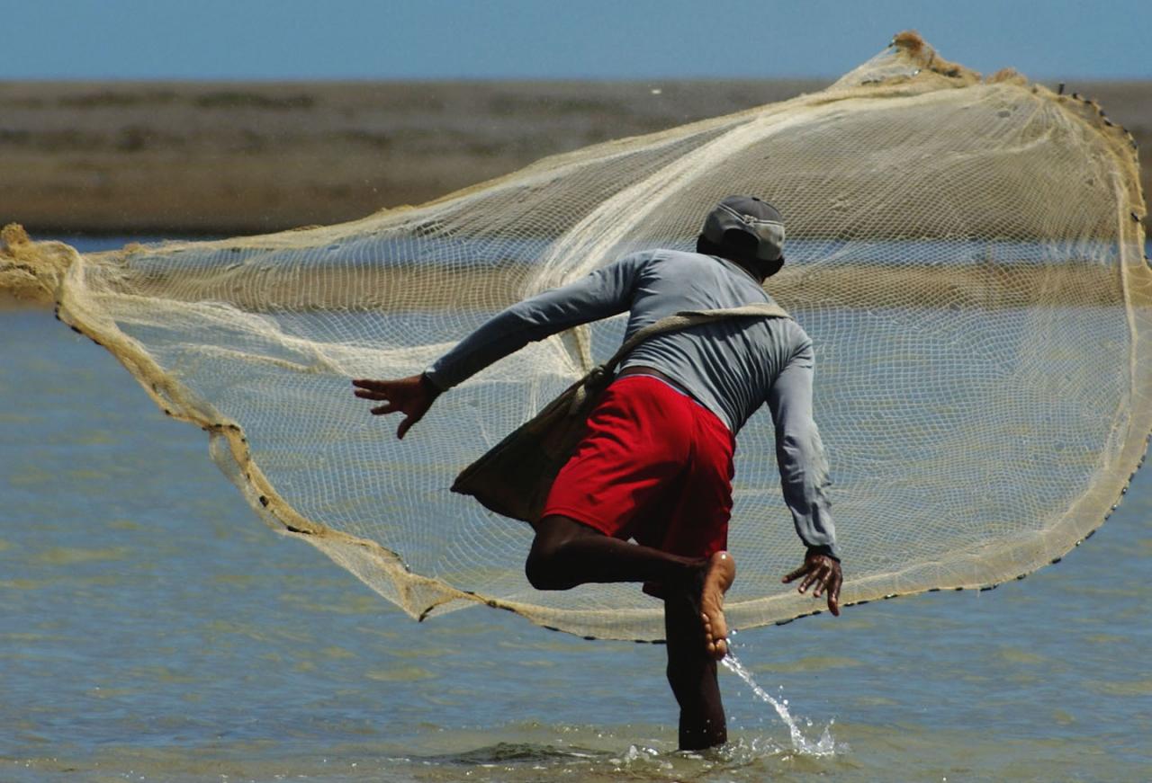 Crisis migratoria y pandemia en La Guajira y Norte de Santander