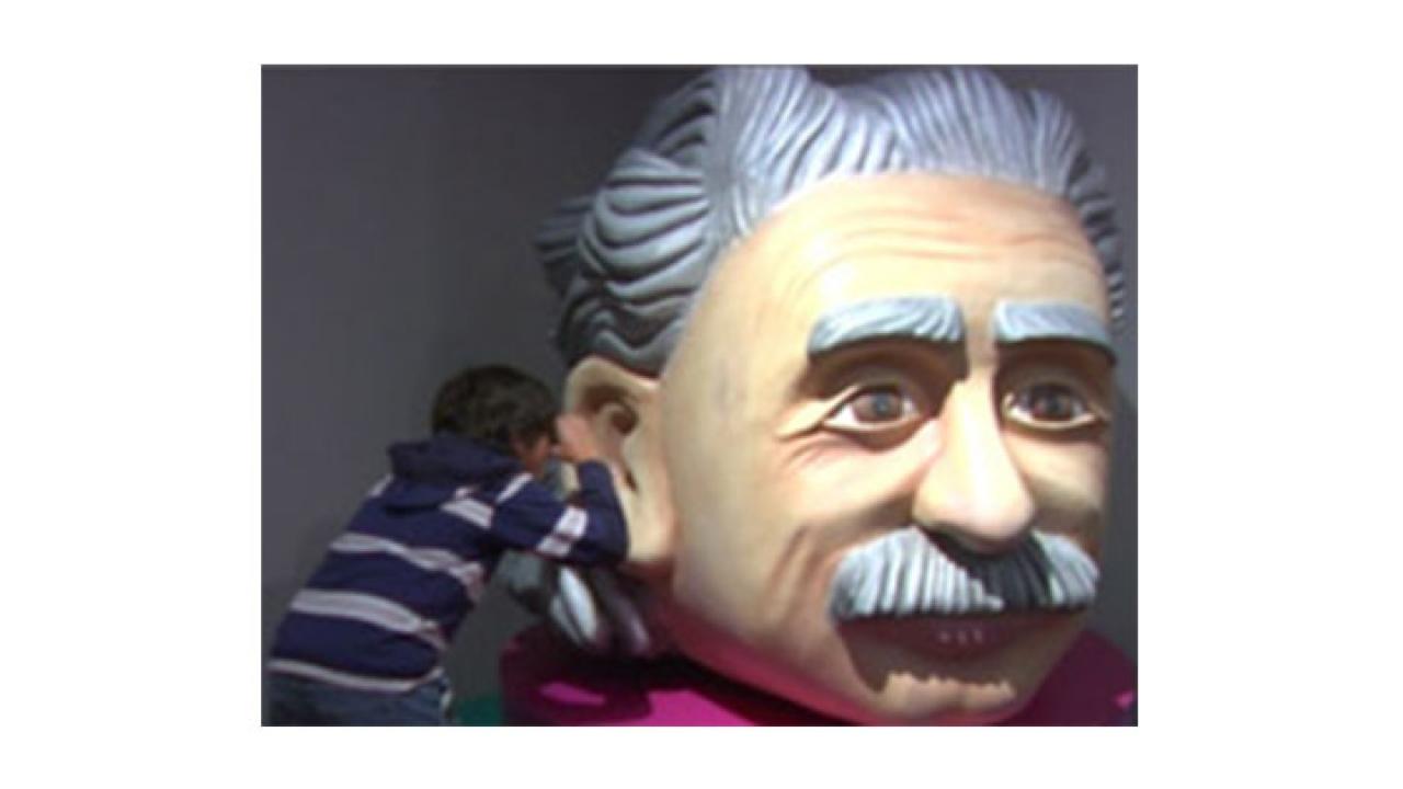 Conozca al verdadero Einstein