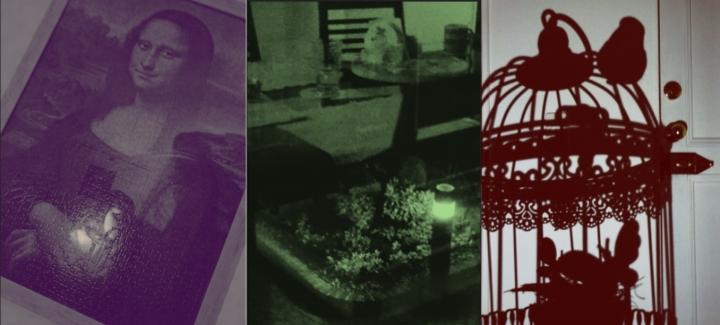 En medio de la oscuridad y a pesar de una pequeña sombra peligrosa, el arte una fuente de luz, Comedor reflejado en la ventana que da al jardín de al frente, Jaula y puerta de una casa, ambas prisiones