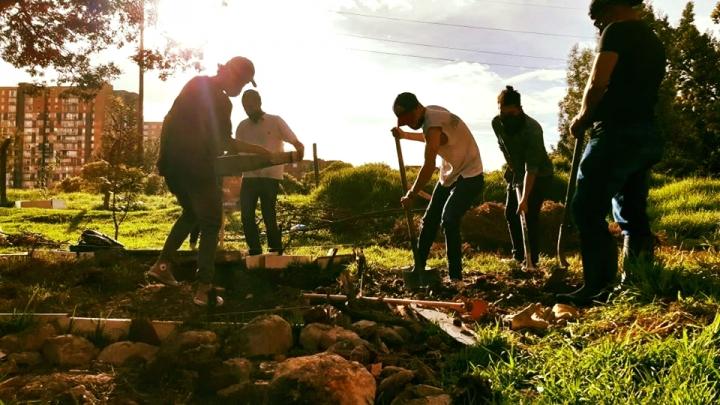 Los jóvenes han tomado la iniciativa de ayudar y ser parte de este proyecto.