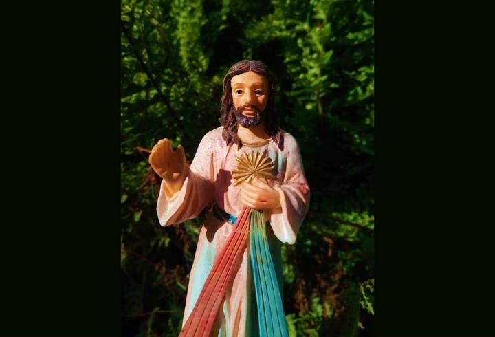 Esperanza como símbolo de vida eterna.Figura entre la naturaleza de Jesús misericordioso. Una postal precisa con la luz, que otorgó la vida del Señor. La última foto está en color en representación de la vida.