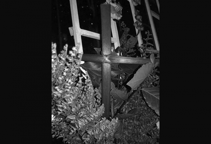Domingo de ramos. Se realizó la cruz con palmas del jardín, posteriormente se ubicaron en las ventanas hacia la calle.