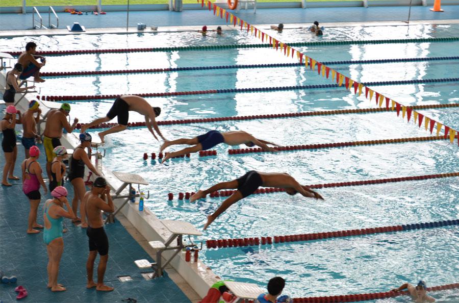Un paseo por las piscinas ol mpicas de bogot for Cerramiento para piscinas colombia