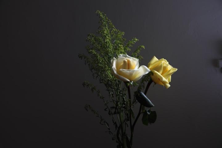 Flores en cuarentena