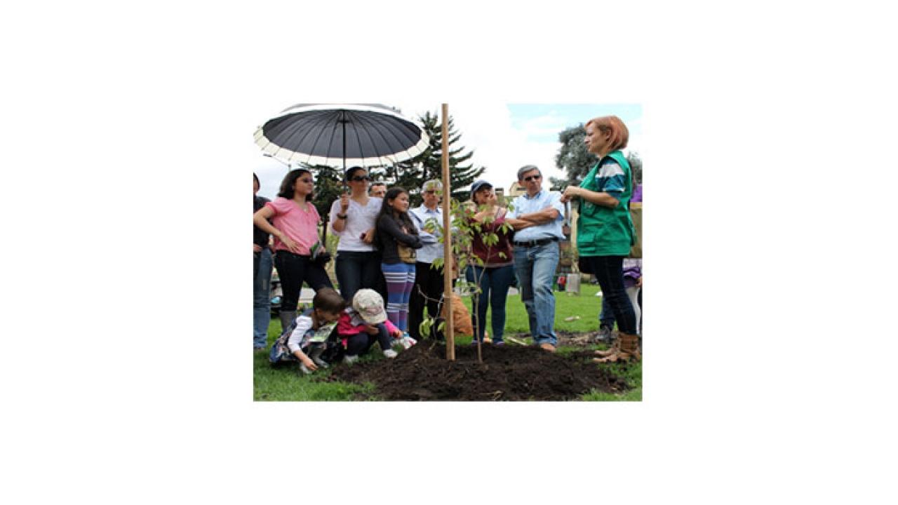 Adopta un Árbol con el Jardín Botánico