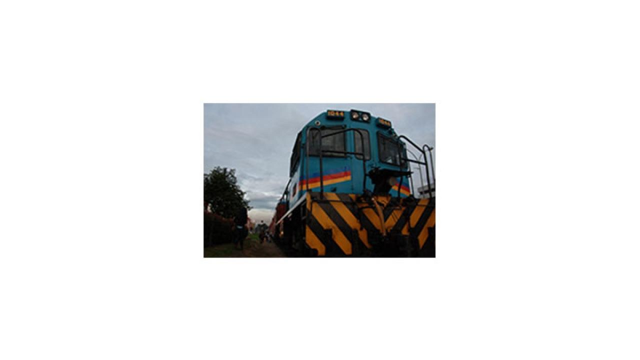 Colados en el Tren Turístico de la Sabana