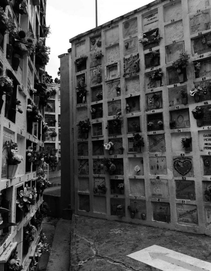 El cementerio Renacer de Suba se encuentra ubicado en la Calle 145B No. 89-03. Fotos: Melissa Ruiz