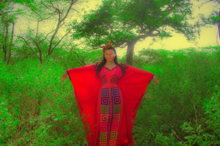 El maíz y la cultura wayú