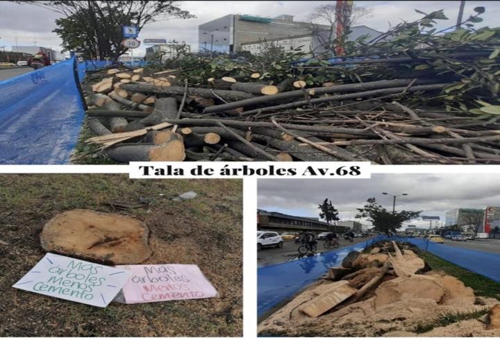 Tala de árboles en Bogotá, por la Avenida 68 el pasado13 de abril.