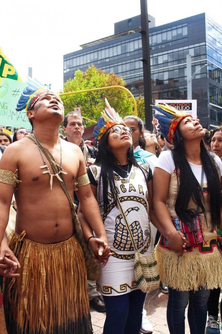 Plantón por la Amazonía: ¡alto a los ecocidios!