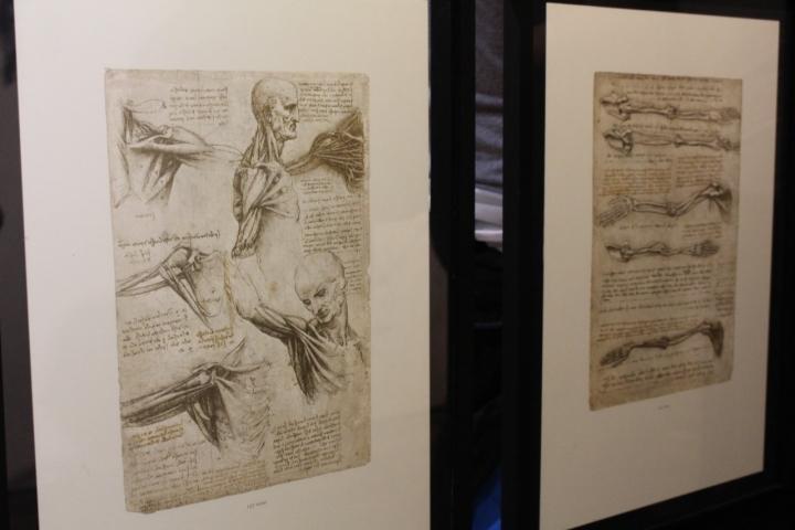 El vuelo de Da Vinci aterrizó en el Chicó