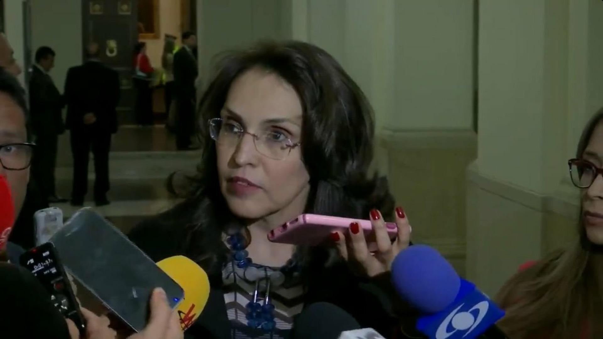 Senadora Viviane Morales realizando las declaraciones sobre el proyecto de ley.