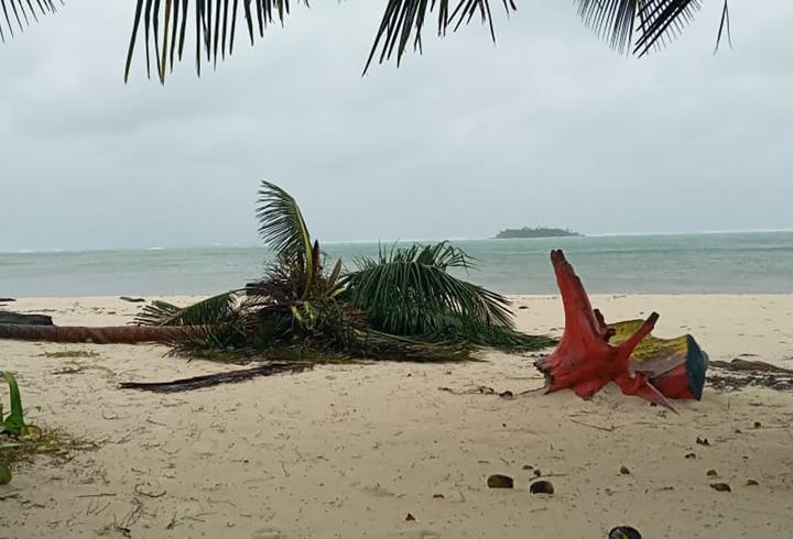 Estado actual de la Isla de San Andrés tras la devastación por huracán
