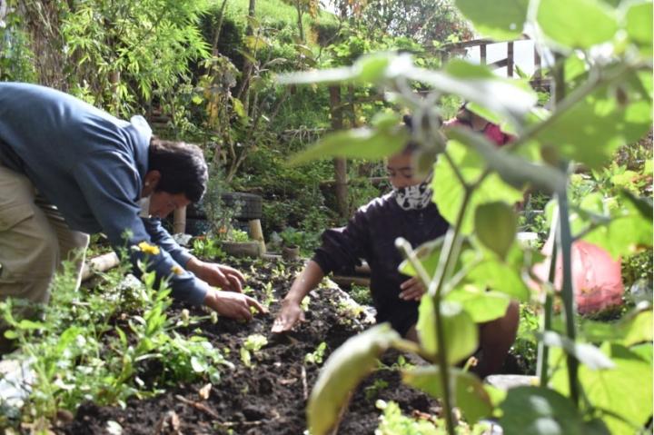 Proceso comunitario de huerta en el proyecto Huertopía