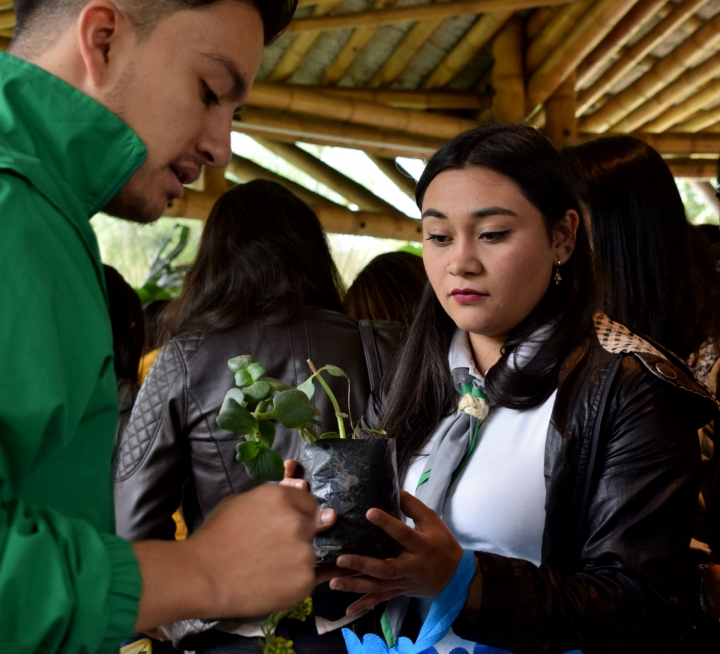 Entrega de planta a asistente a taller de compostaje