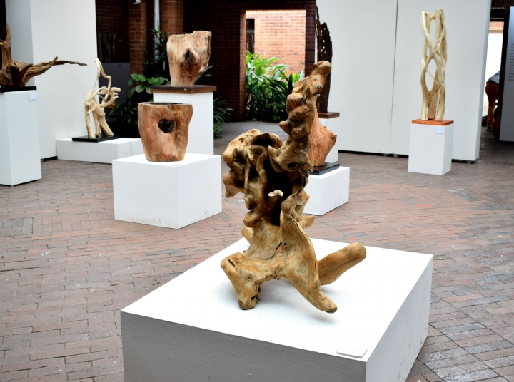 Exposición 'Espíritus del bosque'