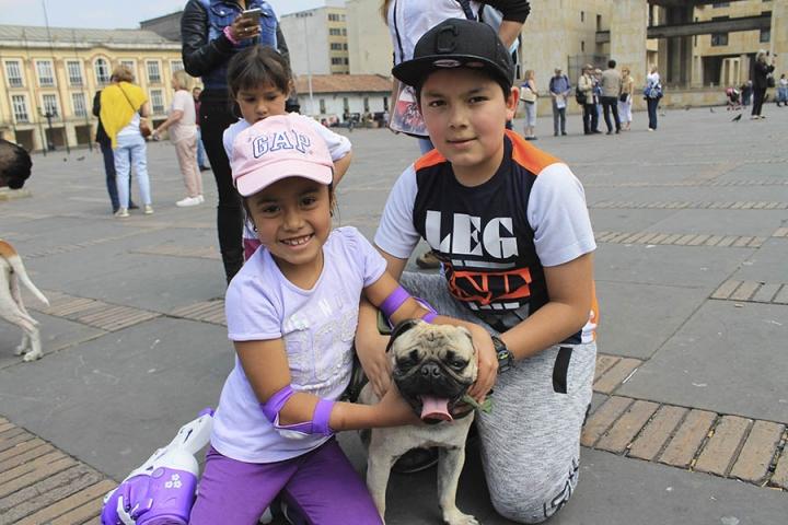 Aunque esta familia no posee un Pitbull o raza peligrosa, junto a su pug decidieron hacer presencia y apoyar la causa.