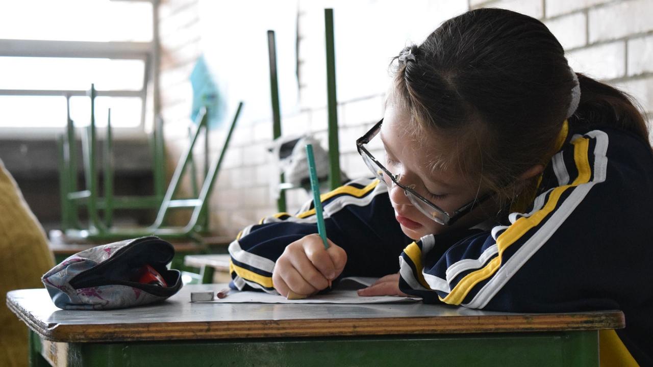 Los retos de la educación incluyente en Colombia