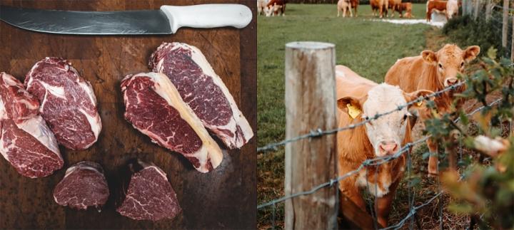 Terneros y carne cruda