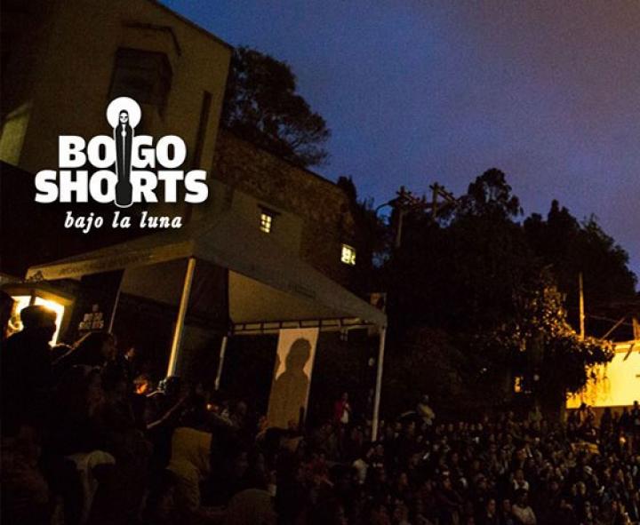 Festival Bogoshort Bajo la luna, Foto: Cortesía