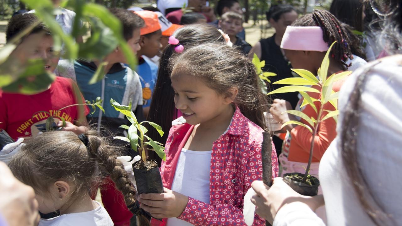 'Sembratones', tutela y plantón para solucionar el problema ambiental