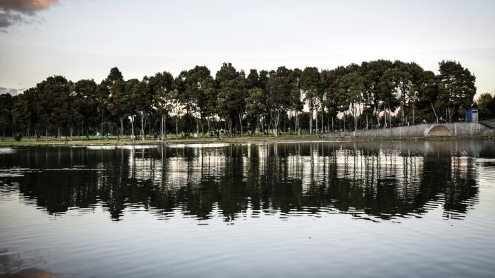 El Parque Simón Bolívar, reconocido como el pulmón de Bogotá por su abundante y variada vegetación.