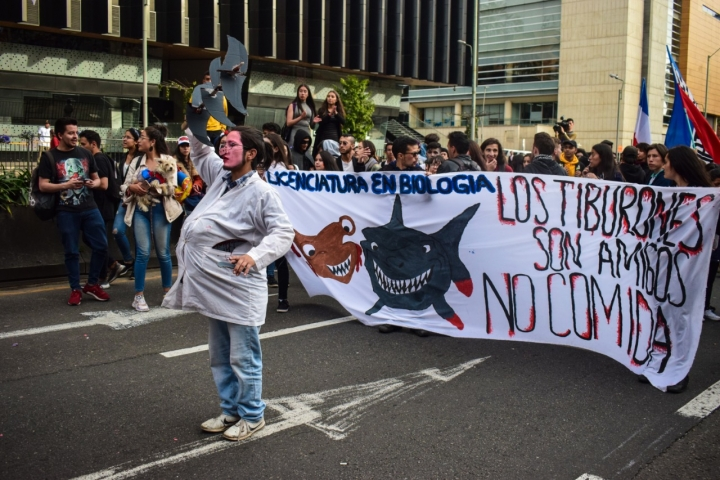 Disfraces y pancartas adornaron el recorrido de las marchas.