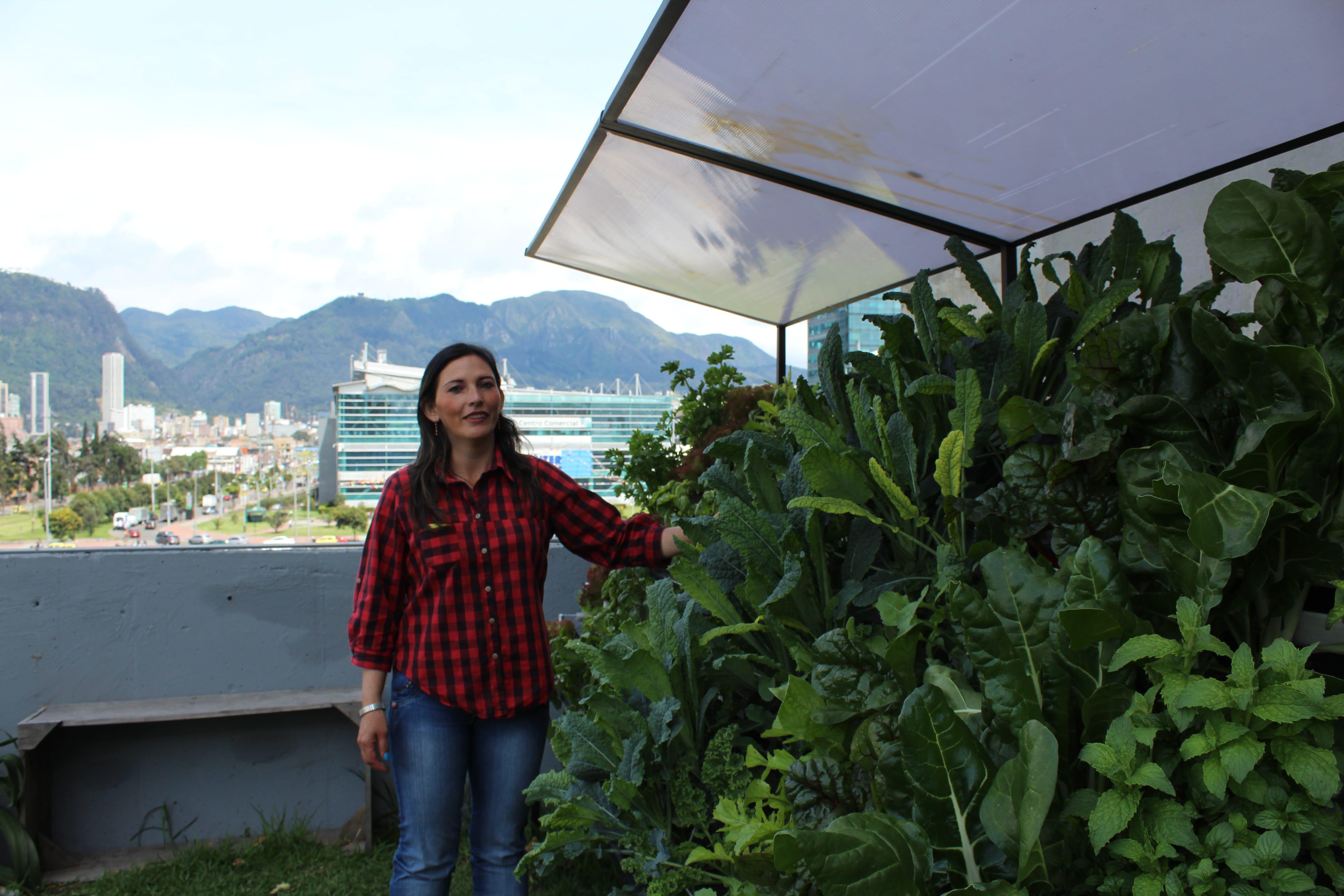 Mujeres de la Hoja siembran en sus terrazas