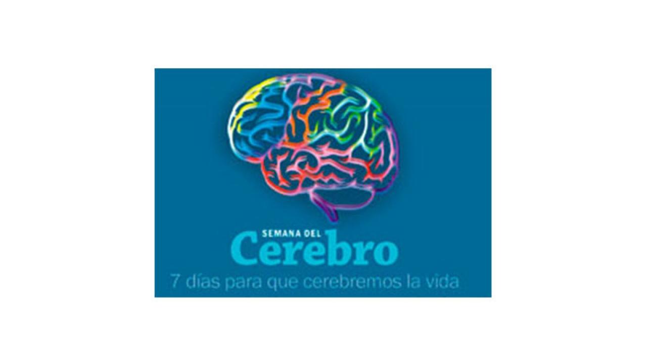 La semana del cerebro se celebrará en la Universidad del Rosario
