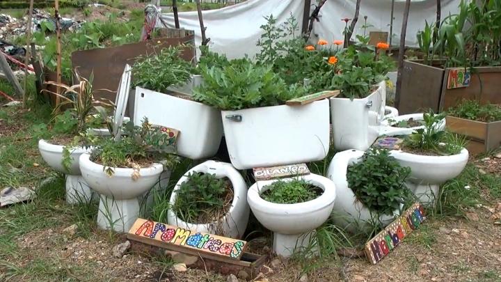 Una forma de reciclar material para sembrar en espacios no convencionales
