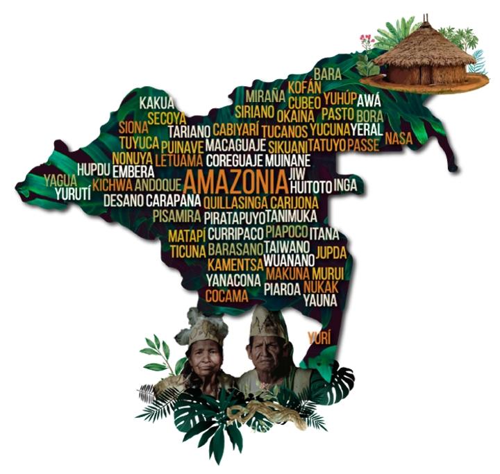 Pueblos Indígenas reconocidos por el estado, en la Amazonía.