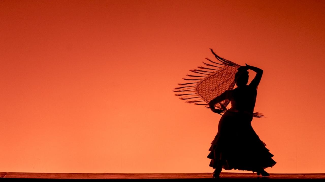 Disfrute del final de la XII edición del Festival Danza en Bogotá