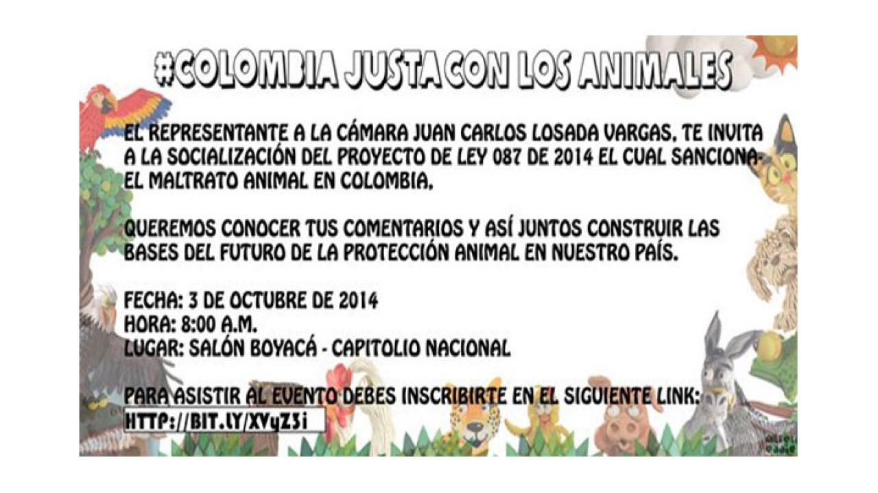 A las 8 a.m. inicia socialización de proyecto de ley que penalizará el maltrato animal