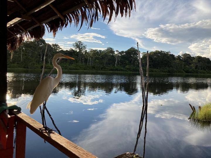 Reserva natural amazónica en Perú