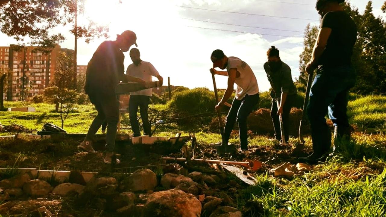 Huerta Hayuelos: un proyecto comunitario que promueve nuevas alternativas para jóvenes consumidores