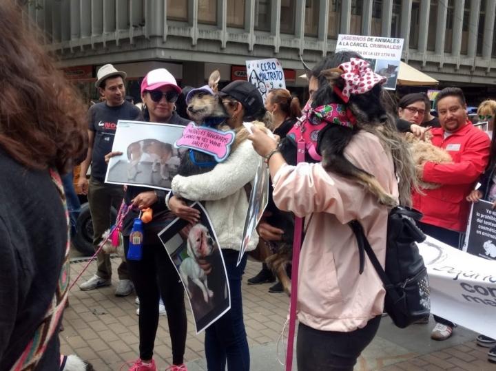 Ciudadanos y colectivos que se reunieron para exigirle al Congreso de la República por la protección de los animales.