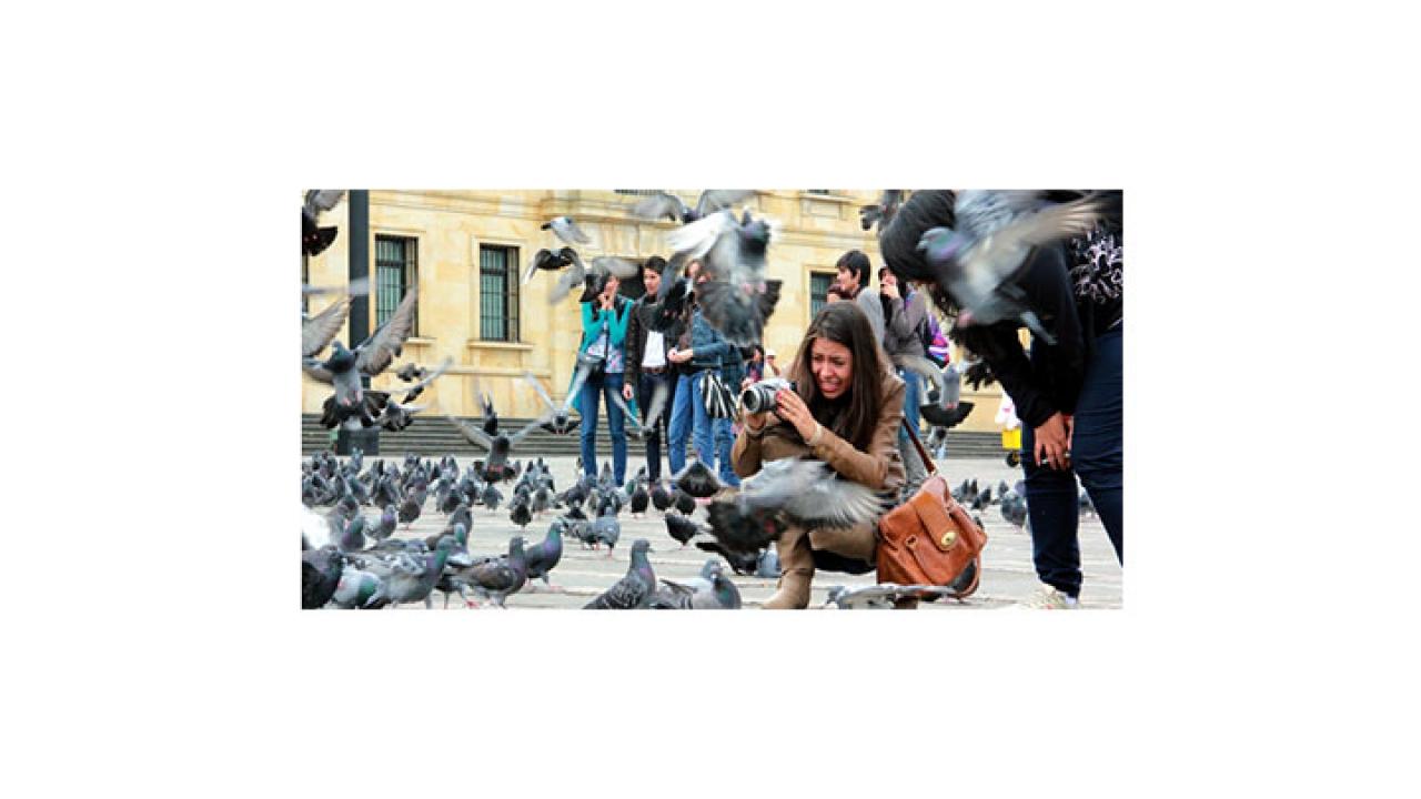 Cursos de Fotografia en la Plaza de Bolivar