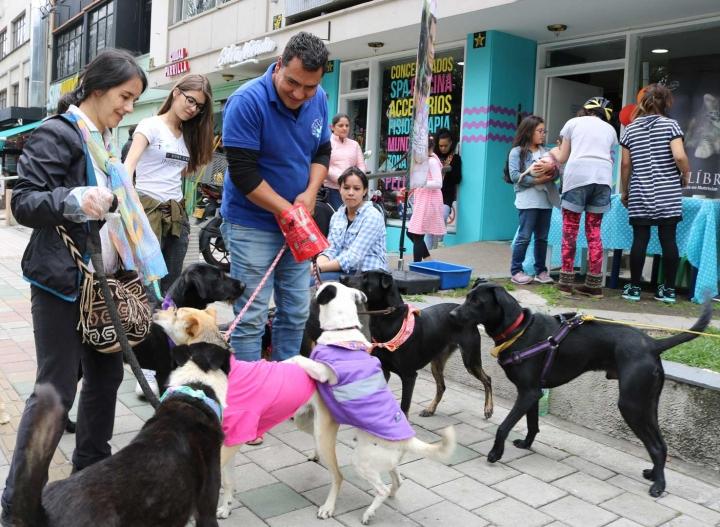 Alejandro Garzón junto algunos voluntarios en la jornada de adopción de perros y gatos, llevada a cabo el pasado 24 de marzo.