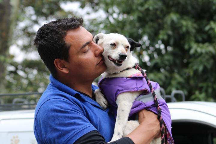 La próxima jornada de adopción que realizará la Fundación Milagrinos será el 27 de abril en el PetSpot en el parque de la 93.