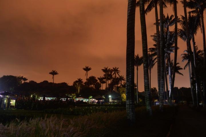 Así fue el primer Jardín Botánico Nocturno del 2017